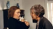 """V roce 1995 se Jirásková před filmovými kamerami po několikáte sešla v duu s Jiřinou Bohdalovou jako sestra slabomyslné Fany. Obě herečky byly dlouholetými kamarádkami: """"Nikdy jsme si nezáviděly. Odešla skvělá, moudrá a vzdělaná žena,"""" řekla Bohdalová."""