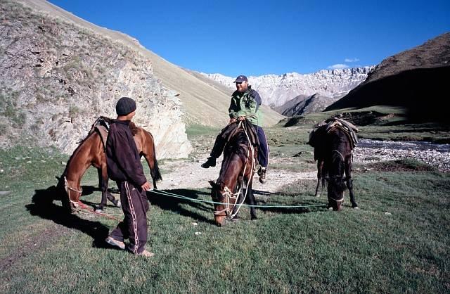 Pastevci jsou k vidění na každém kroku.