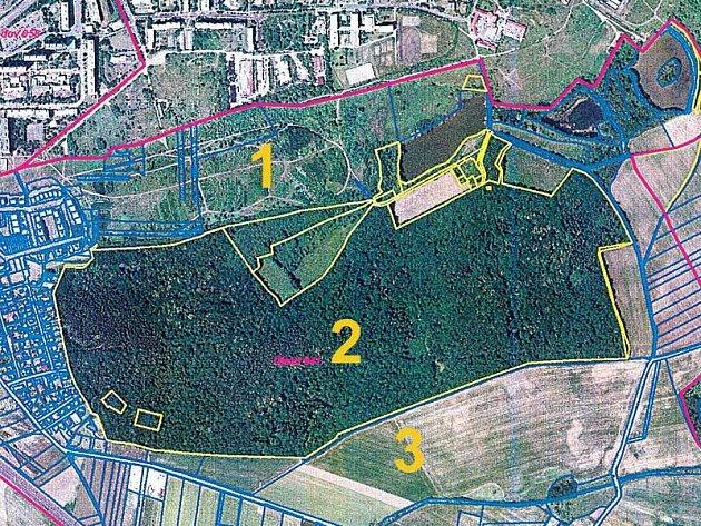 Na Milíčovský les mohou stavební firmy zapomenout.