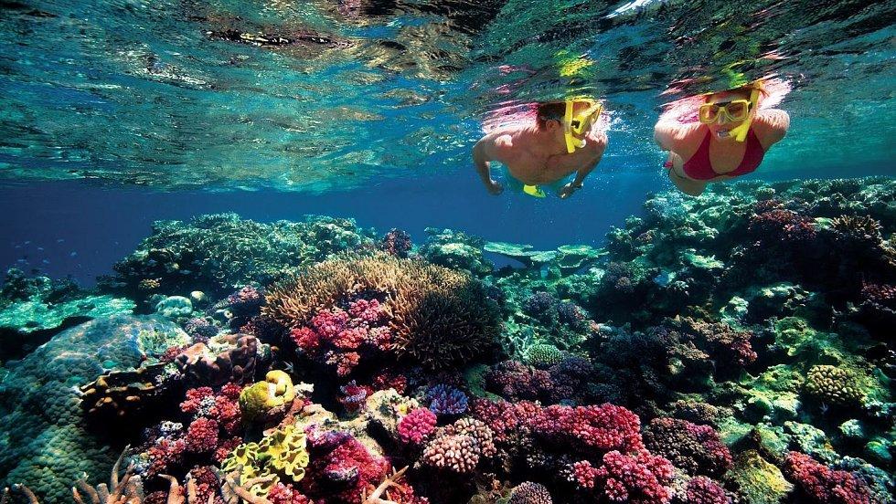 Pro amatérské iprofesionální potápěče je Tichomoří vodami zaslíbenými.