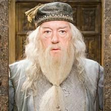Albus Brumbál byl ředitelem celé školy čar a kouzel.