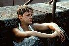 V hitu Vykoupení z věznice Shashank byl Tim Robbins fešák.