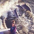 Když chcete mít hezkou fotku a do záběru vám skočí delfíni.