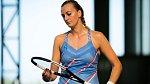 Petra Kvitová vstoupila do světa profesionálního tenisu v roce 2006.