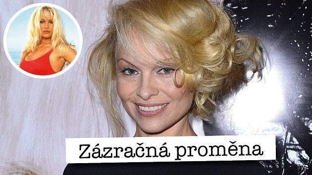 Tommy Lee a Pamela Anderson už jsou zase spolu.
