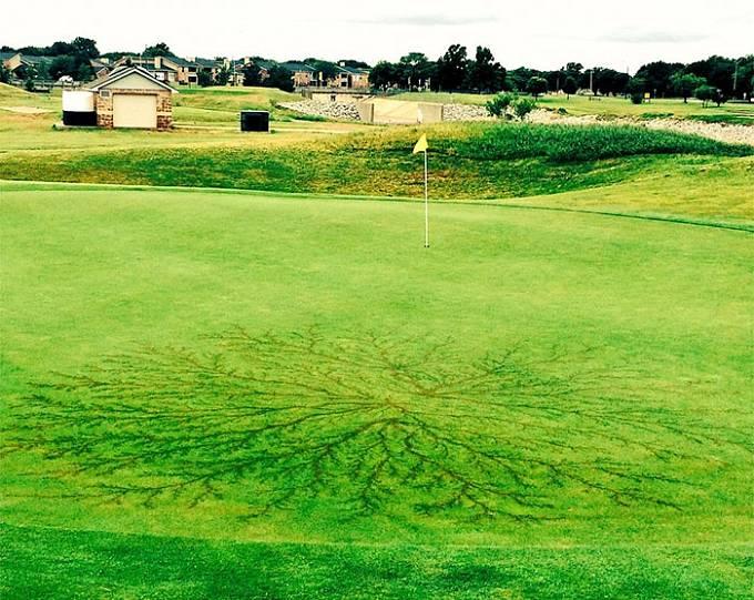 Tohle po sobě zanechá blesk v trávě na golfovém hřišti.