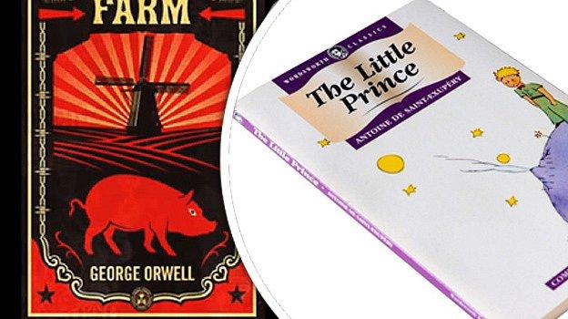Dvanáct knih, které zvládnete přečíst za jeden den.