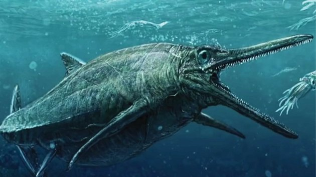 Takhle nějak vypadala mořská stvůra, co trápila Skotsko.