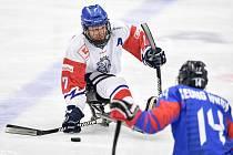 Para hokejisté na letošním MS v Ostravě první dva zápasy prohráli. V tom úvodním nestačili na Jižní Koreu, které podlehli 0:2.