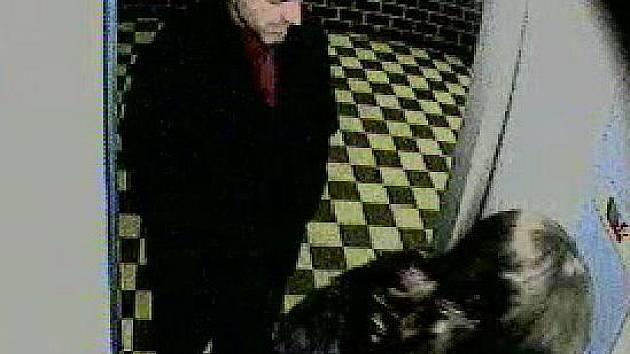 Kamerový systém zachytil lupiče, který přepadl ženu v domě ve Francouzské ulici v Ostravě-Porubě.