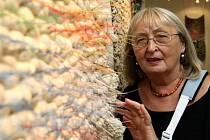 Přední slovenská výtvarnice Eva Cisárová-Mináriková v současné době vystavuje své práce v ostravské Galerii Magna.