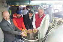 Třinečtí Oceláři Zbyněk Irgl a Jan Peterek chmelili pivo. V nošovickém pivovaru pomáhali založit várku piva na Hutnický den v Třinci.