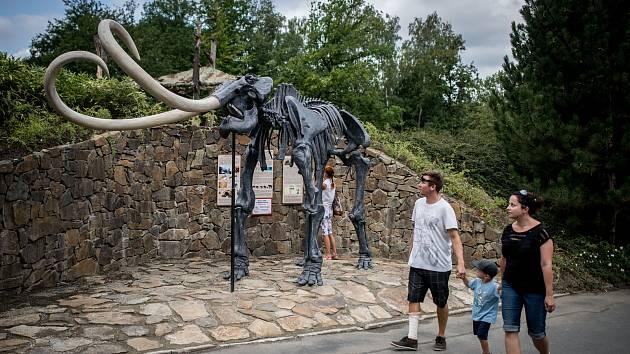 Představení kosterního modelu mamuta srstnatého v Zoologické zahradě Ostrava 15. srpna 2018.