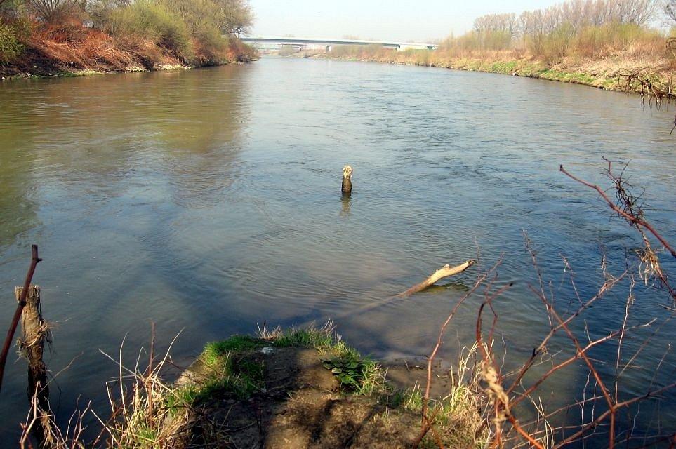 Hydrologicky nejzazší výspa české části povodí Odry je soutok Odry s Olší. Pod ním Odra opouští území ČR (km -3,9 - pohled po vodě, v pozadí mosty v Polsku)