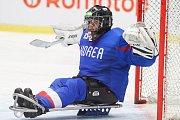 Mistrovství světa v para hokeji 2019, Korea - Česká republika (zápas o 3. místo), 4. května 2019 v Ostravě. Na snímku Lee Jae Woong (KOR).