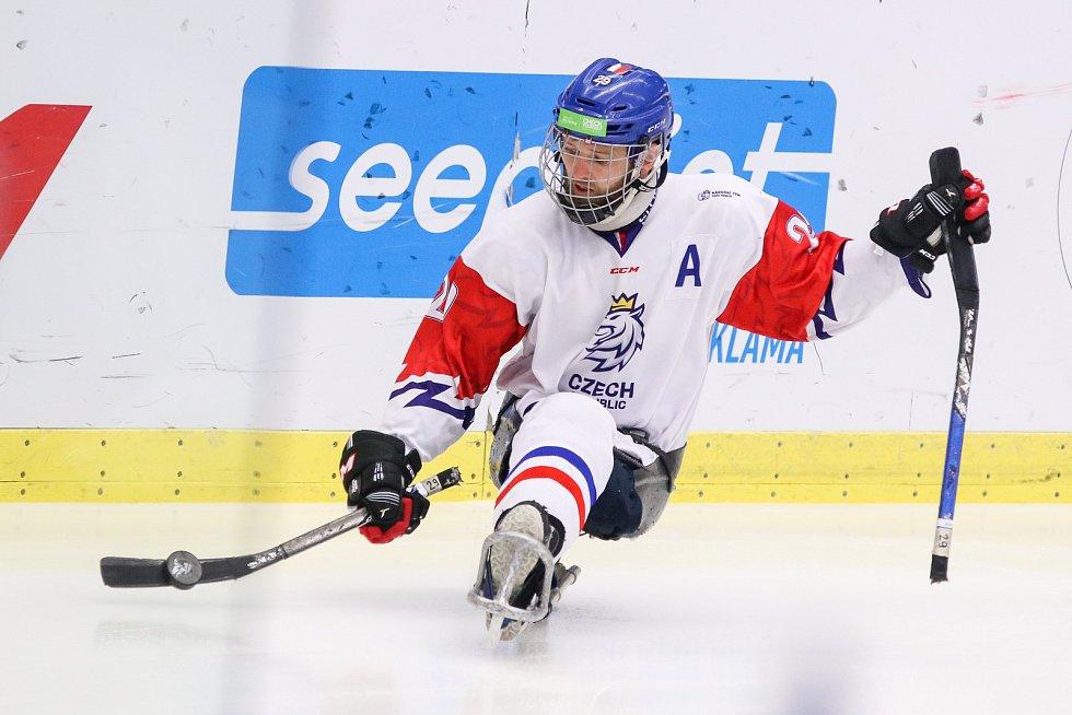 Mistrovství světa v para hokeji 2019, 3. května 2019 v Ostravě. Na snímku Kubes Pavel (CZE).