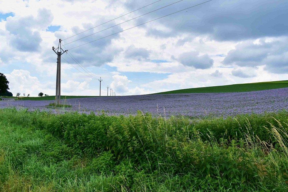 Petr Parák se vydal do končin Náměšti na Hané a okolí Terezského údolí.