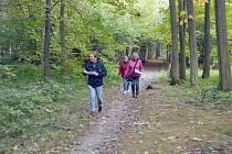 Seniorky a senioři na trase pochodu v Bělském lese.