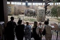Mezinárodní den slonů v Ostravské ZOO, 12. srpna 2017.