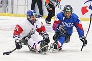 Mistrovství světa v para hokeji 2019, Korea - Česká republika (zápas o 3. místo), 4. května 2019 v Ostravě. Na snímku (zleva) Geier Michal (CZE), Kim Young Sung (KOR).