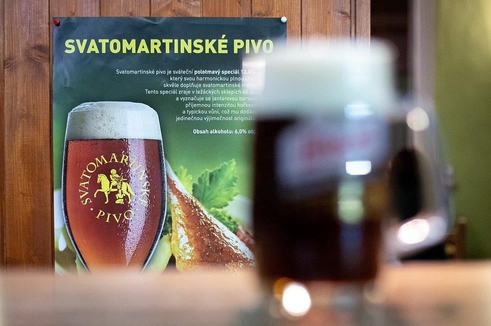 Svatomartinské pivo v Ostravě.