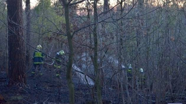 Požár lesa v Šenově u Ostravy.