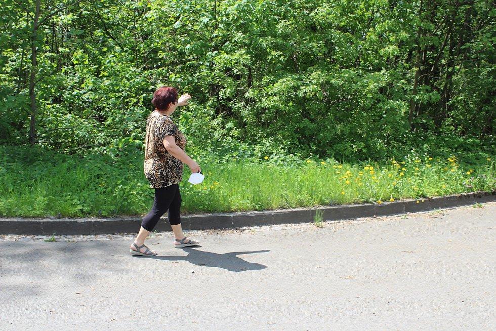 Usedlíkům v Ostravě-Kunčicích (jejich část na snímku) se nelíbí záměr výstavby skladovací haly a kácení toho mála lesního porostu, který v okolí je. Obávají se také zvýšení frekvence nákladní dopravy a skladování stavebního materiálu.