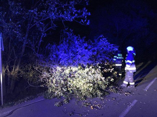 Odstranění zlomené vzrostlé švestky, která tvořila nebezpečnou překážku na silnici.