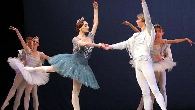 Baletky v souboru Státního mužského baletu ze Sant Petěrburgu určitě nenajdete...