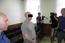 Muž byl odsouzen k deseti rokům vězení.