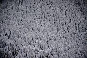 Zima v Beskydech. Ilustrační foto z 11. ledna 2019.