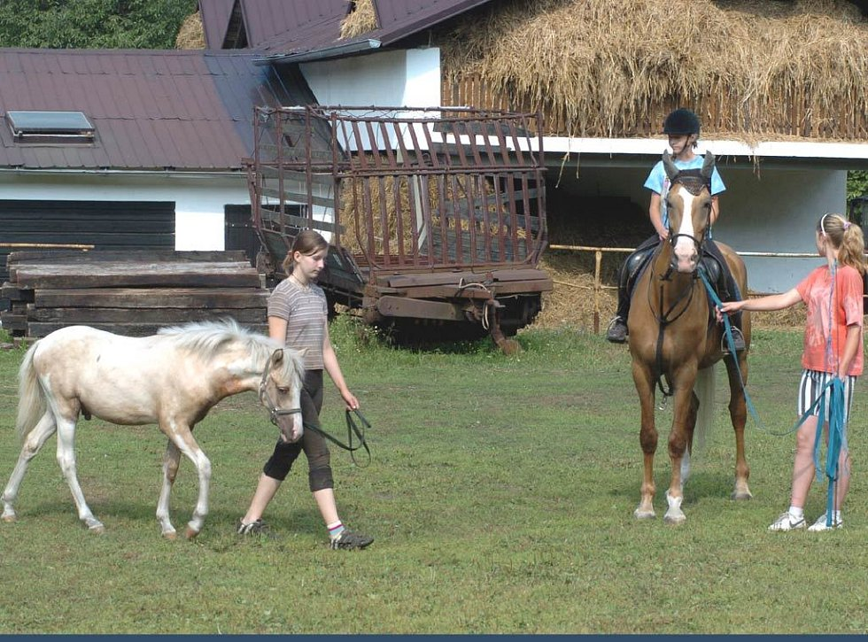 Děti a koně na táboře ve Slezské Ostravě