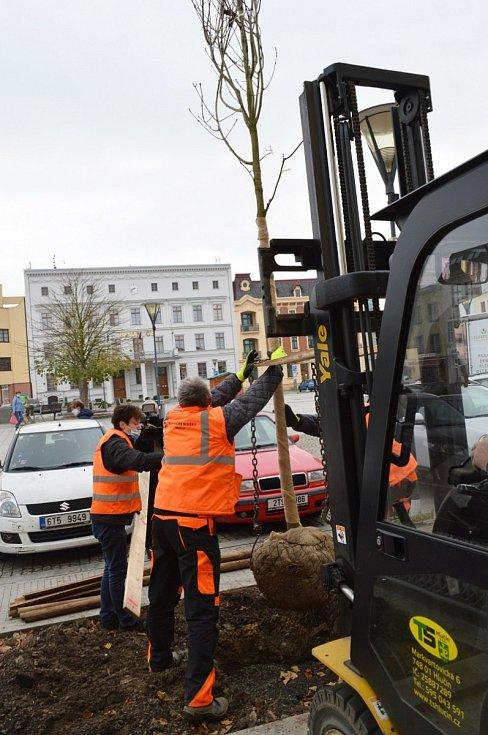 Sázení stromů s podporou Nadace ČEZ - Hlučín.