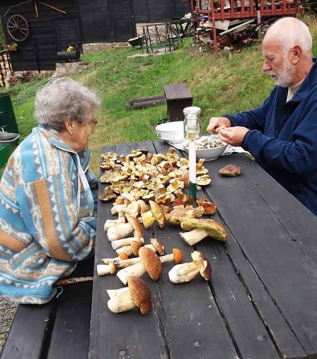 Jak potvrzují manželé Vlčkovi z Havířova, lesy jsou plné hub i v okolí Soláně.