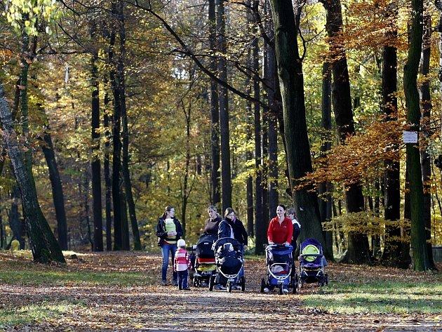 Bělský les
