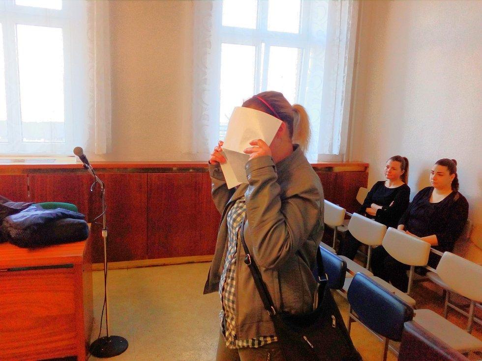 Žena u soudu prohlásila, že svého činu lituje.