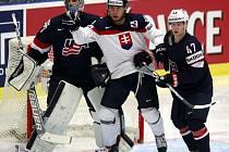 MS v ledním hokeji v Ostravě 2015. Slovensko - USA.