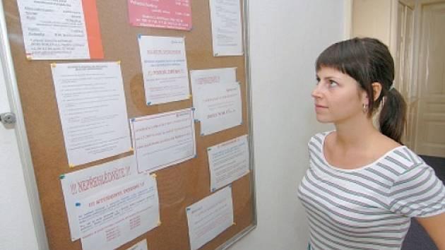Pestrou nabídku brigád nabízejí agentury zaměřené na zaměstnávání studentů.