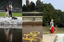 Cyklostezka podél Ostravice. Lidé si ji k projížďkám a procházkám zkolaudovali již dříve sami.