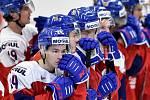 Mistrovství světa hokejistů do 20 let, čtvrtfinále: ČR - Švédsko, 2. ledna 2020 v Ostravě. Na snímku smutek Česka (Petr Cajka).