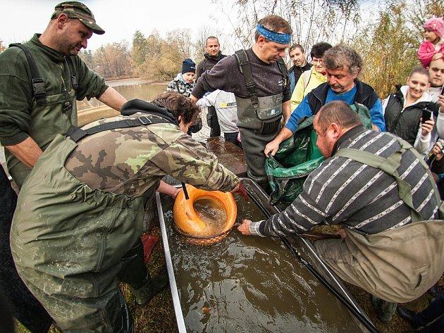 VÝLOV BUKAJOVA RYBNÍKU. Stovky lidí v sobotu dopoledne navštívily tradiční výlov rybníku v Nové Bělé-Mitrovicích. K mání tam byly nejen ryby, ale i rybí speciality nebo koláčky paní vodníkové.