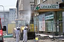 Stovky včel v centru Ostravy zaměstnaly strážníky i hasiče.