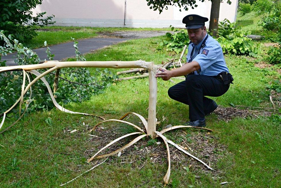 Výsledek vandalského řádění v porubském zámeckém parku zdokumentovali policisté a zahájili pátrání po pachateli.