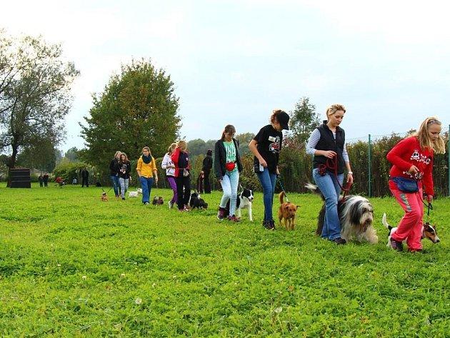 Snímek z podzimního kurzu Kuzma.