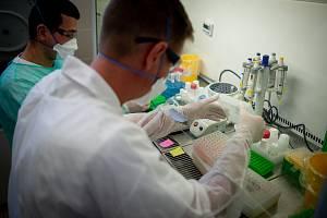 Testování koronaviru, laboratoř AGELLAB. Ilustrační foto.