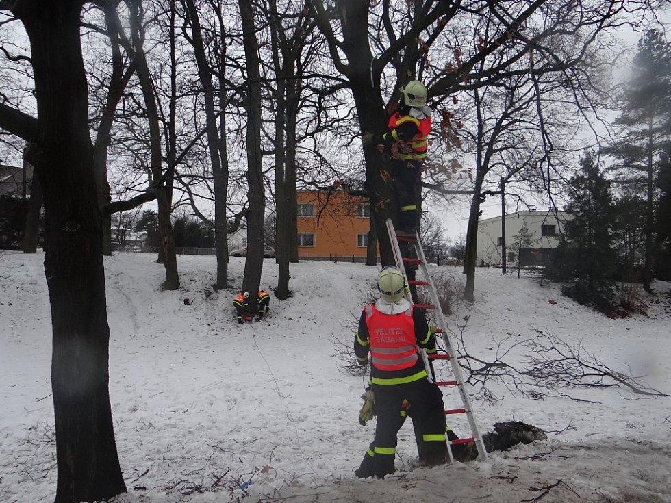 Středeční nehoda v Ostravě-Martinově. Autobus na lince číslo 58 čelně narazil do stromu.