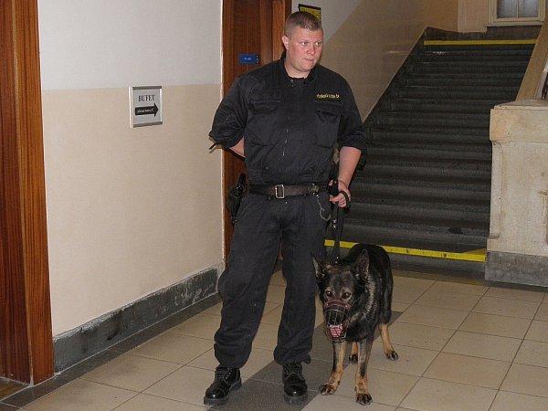 Na pořádek před jednací síní dohlížela vězeňská služba se psem.