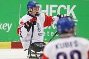 Mistrovství světa v para hokeji 2019, Korea - Česká republika (zápas o 3. místo), 4. května 2019 v Ostravě. Na snímku (vlevo) Hrbek Miroslav (CZE).