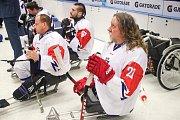 Mistrovství světa v para hokeji 2019, Korea - Česká republika (zápas o 3. místo), 4. května 2019 v Ostravě. Na snímku (vpravo) Kvoch Tomas (CZE).