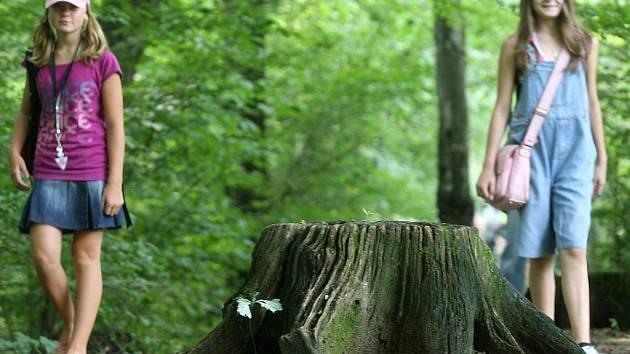 Turkov je v Ostravě posledním útočištěm původních druhů rostlin a živočichů v nivě řeky Opavy.